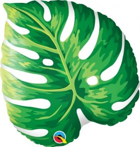 """21"""" SHAPE TROPICAL PHILODENDRON PK"""